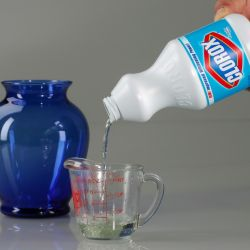 Controversial Church Believes Drinking Bleach Cures All Diseases