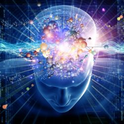 Ministers Search for the Spiritual Brain