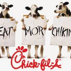 Does NYC Hate Christians? Chick-fil-A Story Sparks Controversy