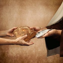 The Greater Meaning of Manna, Bread, and Fish