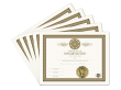 Certificate of Handfasting 5 Pack