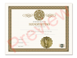 Certificate of Handfasting Single Pack