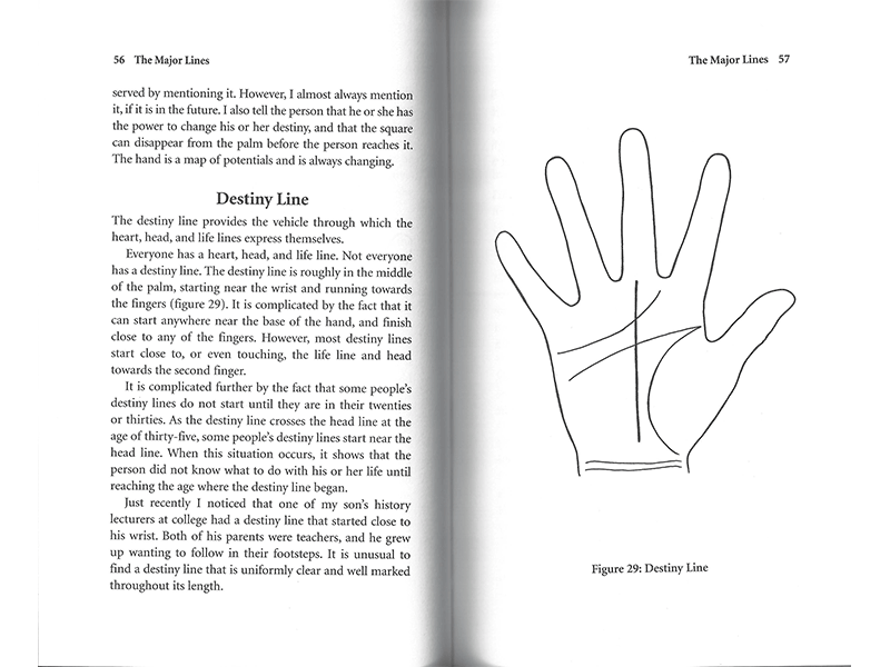 Palm Reading for Beginners page