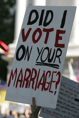Did I Vote on Your Marriage - Protest Sign