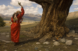 Shaman Blessing a Holy Tree